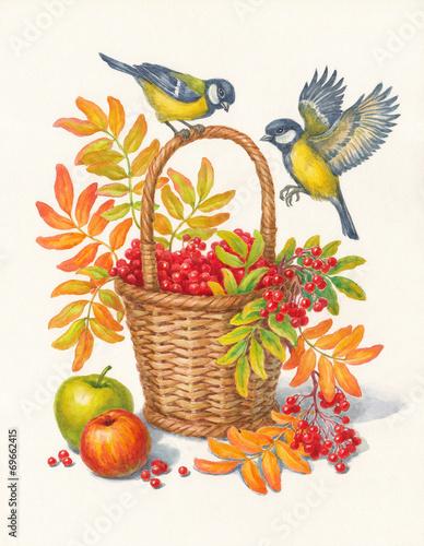 Постер, плакат: Синицы и ягоды рябины осень акварель , холст на подрамнике