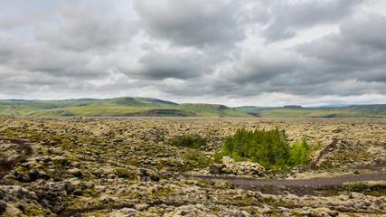 Champs de lave mer Islande