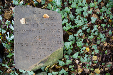 Old tomstone on a jewish cemetery in the Czech republic