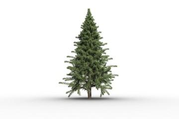Digitally generated green fir tree