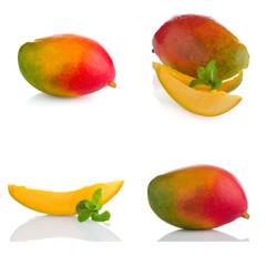 Set of mango fruit