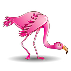 of a pink flamingo leaned on a white background