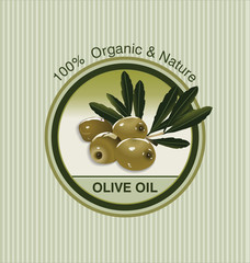 Olive oil  background