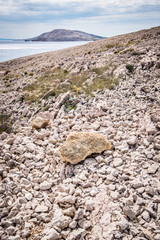 Pag island land Croatia
