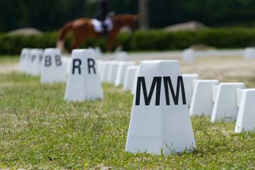 Horse Dressage Rings
