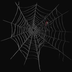 Vector Black Widow Spider on Spider's Web