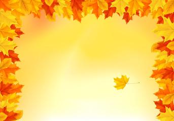 Hintergrund Herbst - bunte Blätter