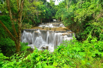 Tropical Rain Forest Waterfalls