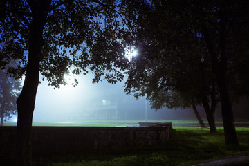 Romantic and mysterious city park covered with fog.