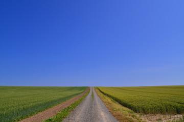 田園風景~道