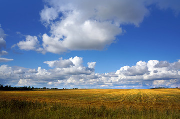 Autumnal nature,  fields  and clouds on sky
