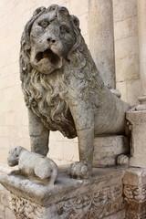 Particolare leone Cattedrale di Altamura