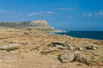 rocky coast and rough sea