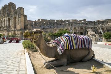 El-Jam, colosseum, Tunisia
