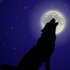 heulender Wolf vor Vollmond