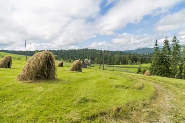 Carpathian highlands