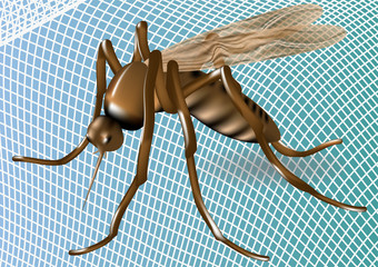mosquito net and mosquito