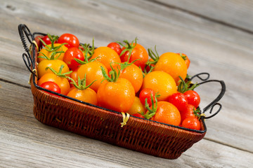 Angled View of Garden Fresh Tomatoes in basket