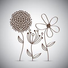 flowers desing