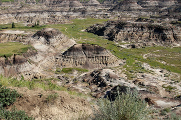 Alberta badlands, Canada. Horseshoe Canyon.