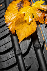 Autoreifen profil mit Herbst laub