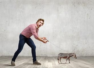 Zebra on lead