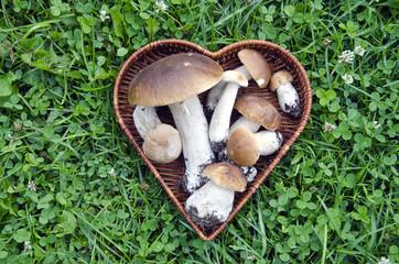 cep mushroom in heart form basket