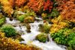 Herbst Paradies