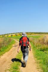 Lonely pilgrim, Camino de Santiago, Spain
