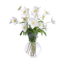 Beautiful bouquet of white flowers in transparent vase