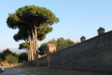 the walls of Pompeii