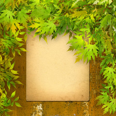 Old paper listing on rusty iron wall with bright green foliage
