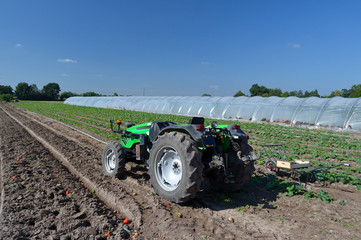 Tracteur dans un champ
