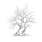 Baum mit geschwungenen Ästen