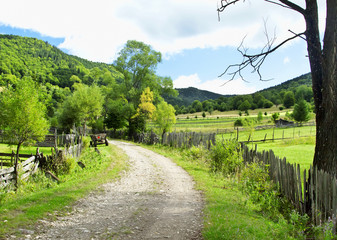 Beautiful Countryside Landscape ,Road and Vegetation