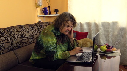 senior grandma woman work with laptop notebook computer at home