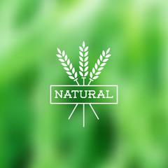 Natural vintage label on blurry background