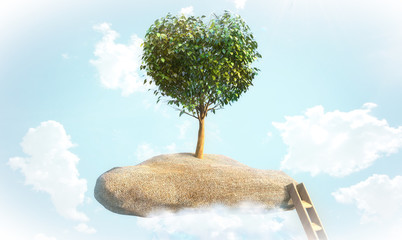 tree shaped heart on a rock in the sky
