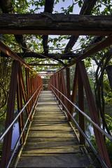 Sunrise Hanging Bridge