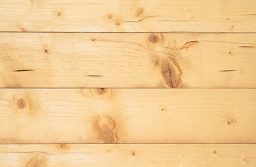 Detail of the structure of softwood boards