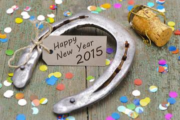Hufeisen als Glücksbringer für Neujahr 2015