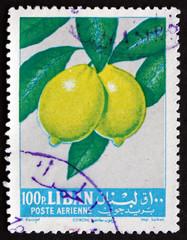 Postage stamp Lebanon 1962 Lemons, Fruit Tree