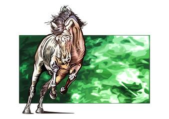 free_horse_03