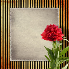 Old vintage card with peony on golden striped background