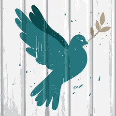 Dove on wood background
