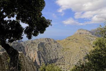Mallorca, im Tramuntana Gebirge