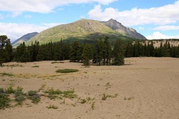 Carcross Desert, Carcross, Yukon, Canada