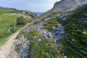 French Beach Trail, Twillingate Island, Newfoundland