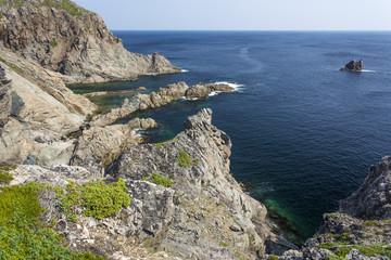 rugged coastline, Twillingate Island, Newfoundland