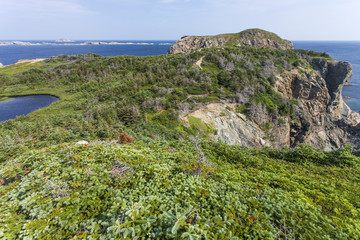 French Head promontory, Twillingate Island, Newfoundland